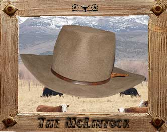 THE MCLINTOCK